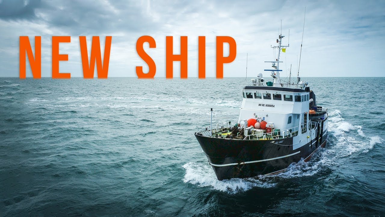 A New Ship! The Sea Eagle Joins Sea Shepherd's Fleet