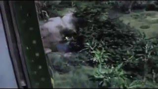 ベトナム戦争:これが戦場だ