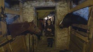 Катаюсь на лошади галопом Первый раз на конюшне Незабываемые ощущения
