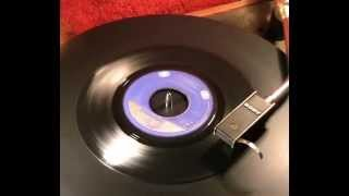 Dave Dee Dozy Beaky Mick & Tich - The Wreck Of The