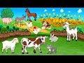 Suara Hewan   Animasi Nama Binatang Ternak