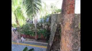 Puerto Rico 2011. Jayuya!