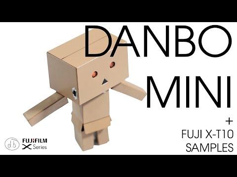 Revoltech Danboard Mini - Meet Our New Model Danbo!