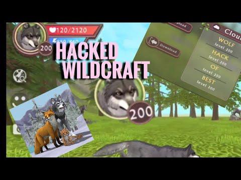 wildcraft hack lvl