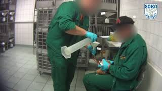 Download **LEAKED VIVISECTION FOOTAGE** Animal Testing [Germany]
