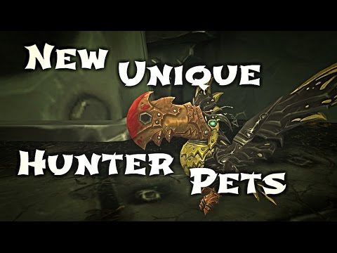 Wow Guide Unique Hunter Pets Youtube