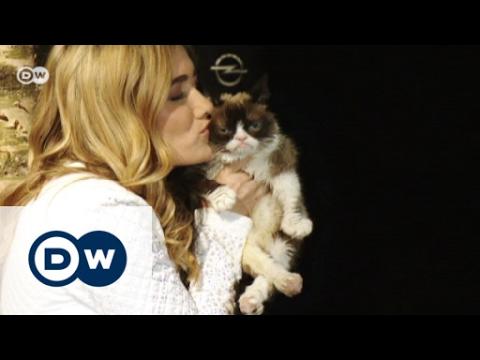 grumpy cat im aktuellen opel-kalender   euromaxx - youtube