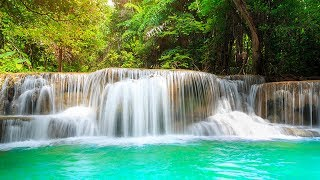 Relaxing Music 24/7, Calm Music, Meditation, Sleep Music, Sp...