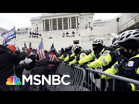 Backers Of 'Law & Order President' Attacked Capitol Police | The 11th Hour | MSNBC