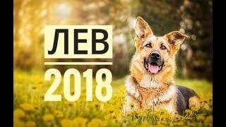 ЛЕВ 2018. Самый точный гороскоп онлайн для всех