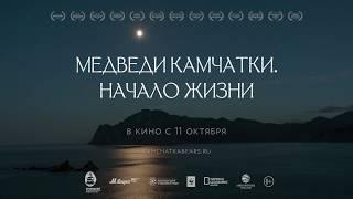 Медведи Камчатки (Документальный/ Россия/ 12+/ в кино с 11 октября 2018)
