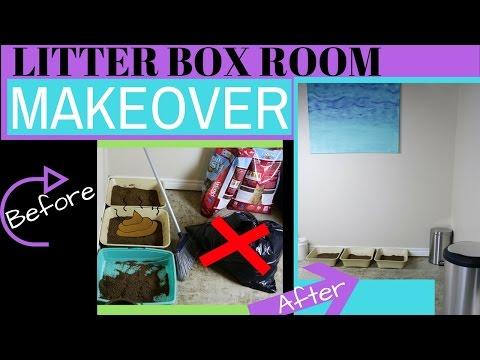 how-to-organize-your-litter-box-room