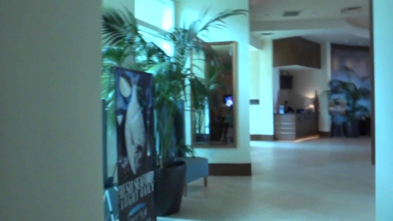 otis elevators at the hilton garden inn in va beach va youtube