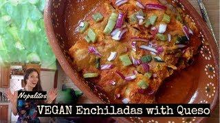 Nopalitos! 3 Vegan Recipes in One: Vegan Enchiladas, Queso + Tomatillo Salsa or Salsa Verde