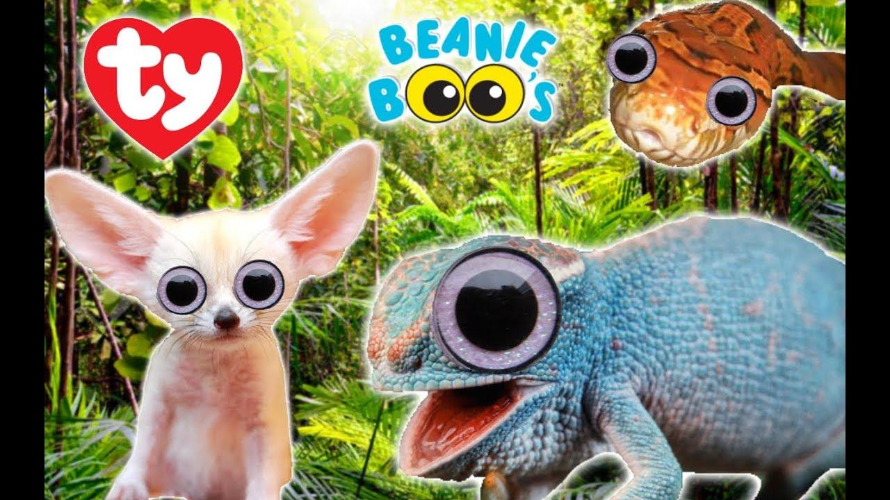 795da8a480b New Beanie Boos 2019  Beanie Boos we wish TY would create! - YouTube