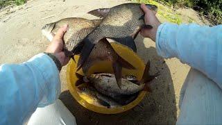ЛЕЩ на макушатник. Ловля леща на Александровском водохранилище в июле. Рыбалка с ночёвкой