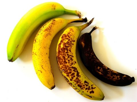 Why do bananas change color? (Young Philosophers)