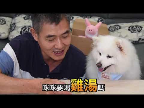 狗的五星級年菜『咪咪會喜歡嗎?』 720p