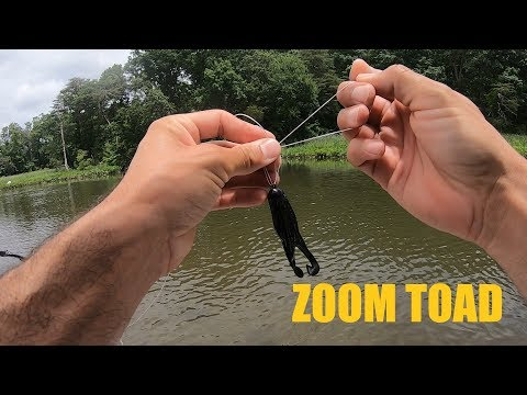 Zoom Horny Toad - Finesse Topwater For Finicky Bass