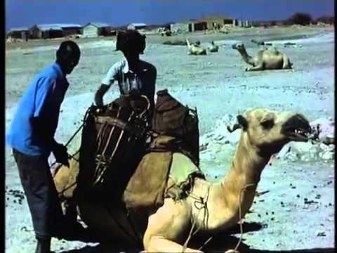 Somali xoolo dhaqato ah oo ku sugan tuulada Raaso ee mudug 80-kii