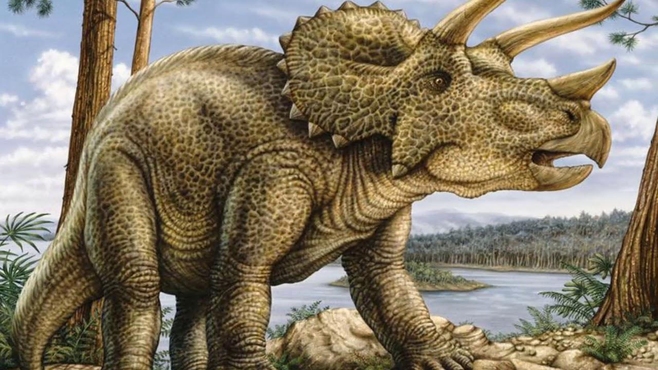 NorthStar Dinosaur T-Rex Triceratops Stegosaurus ... |Triceratops Dinosaur