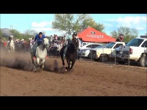 Carreras de caballos de silla 21 de marzo nacori gde for Sillas para caballos