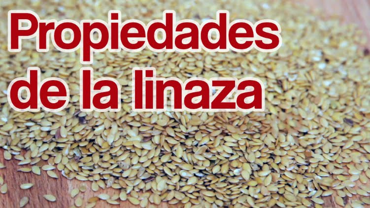 contraindicaciones de consumir semillas de lino