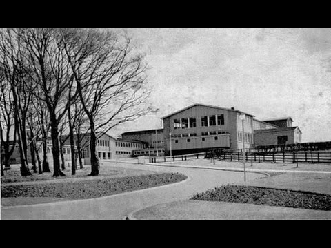 Laurence Jackson School.  1. The Early Years