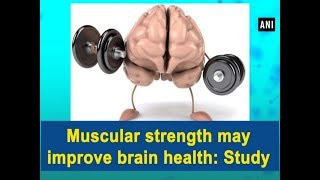 Muscular strength may improve brain health: Study - ANI News