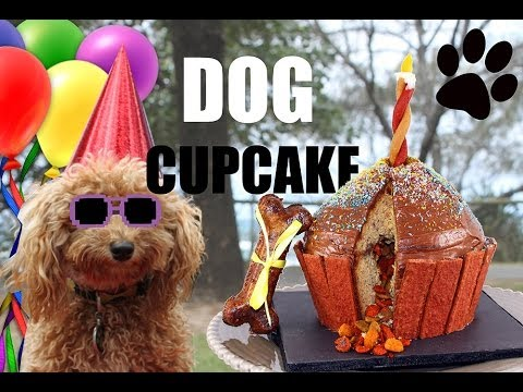dog-cupcakes!-giant-puppy-dog-cupcake-with-mycupcakeaddiction---diy-dog-food-by-cooking-for-dogs