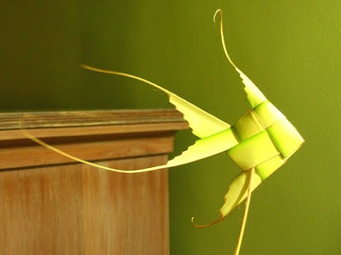 How To Make Gold Fish Using Palm Leaf || How To Make Fish From Coconut Leaf