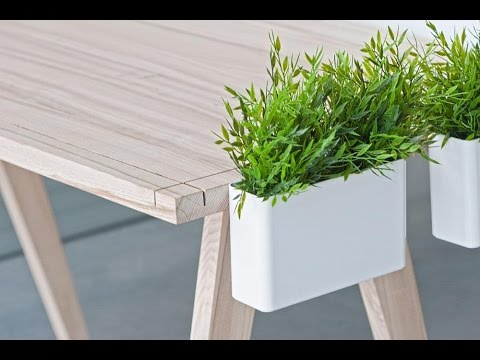 desk plants desk plants for work youtube