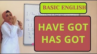 #12 Have Got/Has Got Basic English