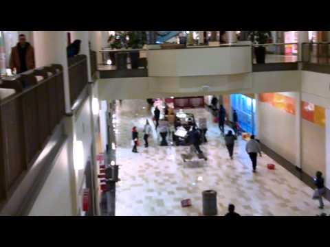 Crossgates mall brawl