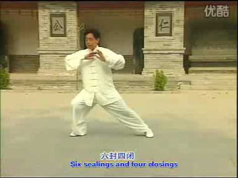 Chen Style Tai Chi   Old Frame One Teaching Video (13)