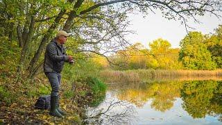 Ходовая Рыбалка на ЩУКУ Клюнула у самых ног