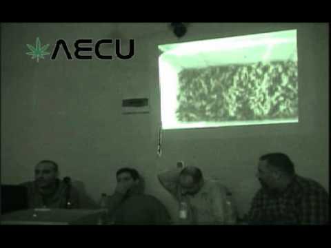 04 10 2012 AECU charla genética