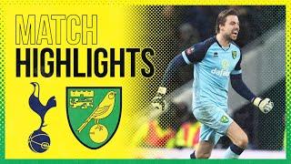 Highlights Tottenham Hotspur 1 1 Norwich City Aet 2 3 Pens Tim Krul S Penalty Shootout Heroics MP3