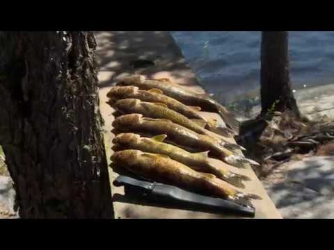 Midwest Outdoors #1677 - Ontario Adventure At Woman River Camp #2