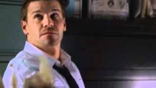 David Boreanaz - Booth (Bones, 5)