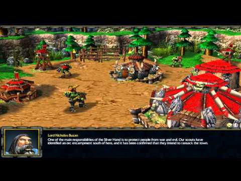 Warcraft 3: Rowan the Wise 01 - The Silver Hand