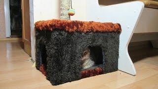 Домик для котов. House for cats.(Как своими руками сделать домик для котов. How to make a house with his own hands for the cats., 2015-12-01T21:52:33.000Z)