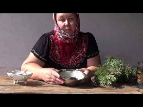 ПОЛЬЗА КЕДРОВЫХ ШИШЕК || Рецепт приготовления настоя из шишек от Ефименко Н.Ю.