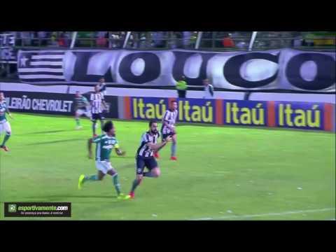 Botafogo 3x1 Palmeiras - Gols e Melhores Momentos (31.07.2016) - Série A
