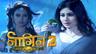 naagin session 2   adaa khan mouni roy confirmed in naagin 2 colors tv new serial