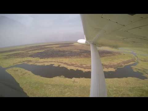 Gambella Fly Over: Migration of White Eared Kob and Nile Lechwe