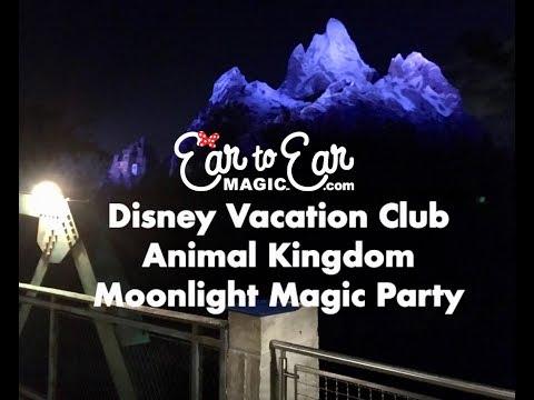 2018 DVC Moonlight Magic Party at Disney's Animal Kingdom