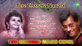 Tum Dhondho Mujhe Gopal | Hindi Devotional Song | Jagjit Singh
