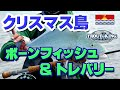 DVD8 クリスマス島 ボーンフィッシュ&GT フライフィッシング