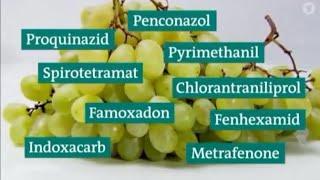 Gefährliche Pestizide in Obst und Gemüse der Supermärkte und Discounter